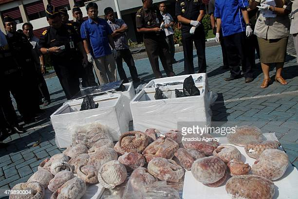 Indonesian customs officials display seized shipment of 13 tons of frozen pangolin bound for Singapore during a ceremony destroying the seized...