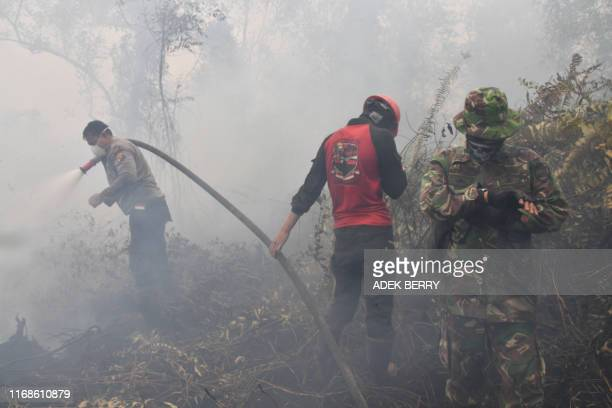 Indonesian firefighters spray water to extinguish a fire in Kampar on September 16 2019 The number of blazes in Indonesia's rainforests has jumped...