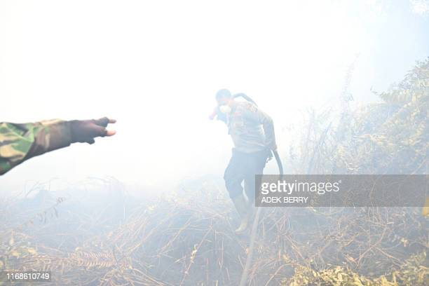 Indonesian firefighters spray water to help extinguish a fire in Kampar on September 16, 2019. - The number of blazes in Indonesia's rainforests has...