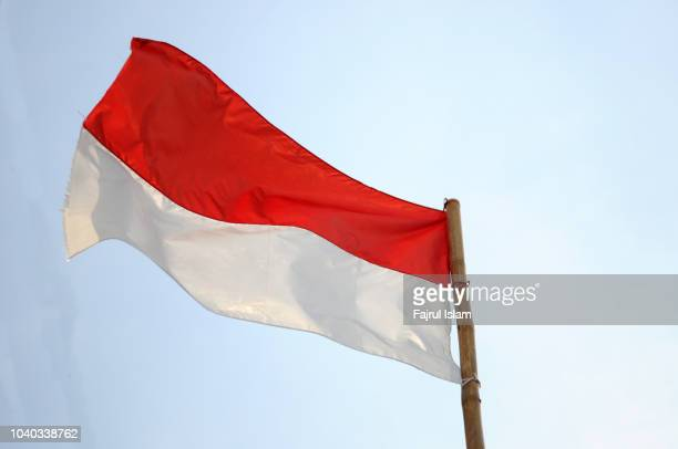 indonesian flag - indonesia flag stock photos and pictures