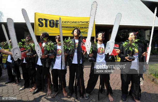 Indonesian Greenpeace activists hold plants banners and chainsaw cutouts as they hold a protest outside The Forestry Ministry in Jakarta on August 6...