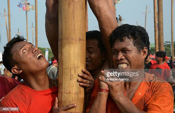 Indonesian men compete for a prize in climbing a greased pole called Panjat Pinang during the 69th National Independence Day celebrations on August...