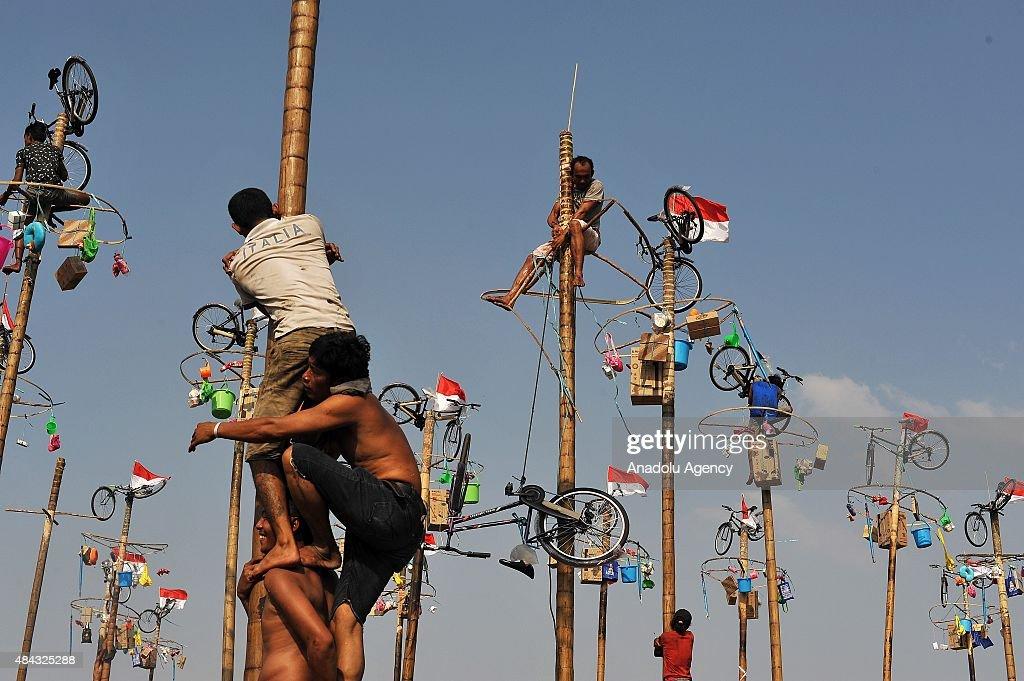 """Indonesia Independence Day """"Panjat Pinang"""" : News Photo"""