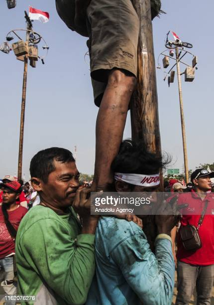 Indonesian people take part in a mass climbing competition at Ancol Carnival Beach Jakarta Indonesia on August 17 2019 A total of 174 areca trees are...