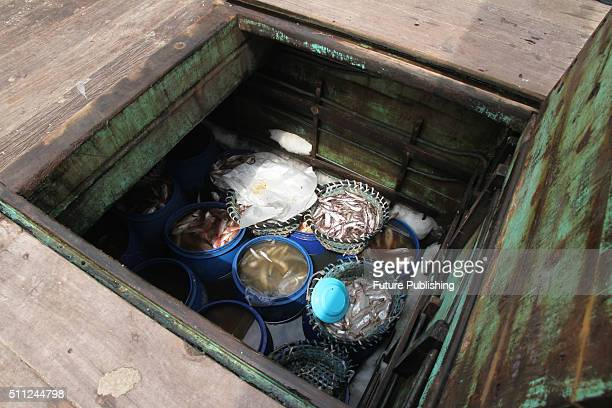 Indonesian Police officers catch illegal Malaysian fishing boats along with two unit Pukat tiger and 4 crews from Thailand on February 17 2016 in...