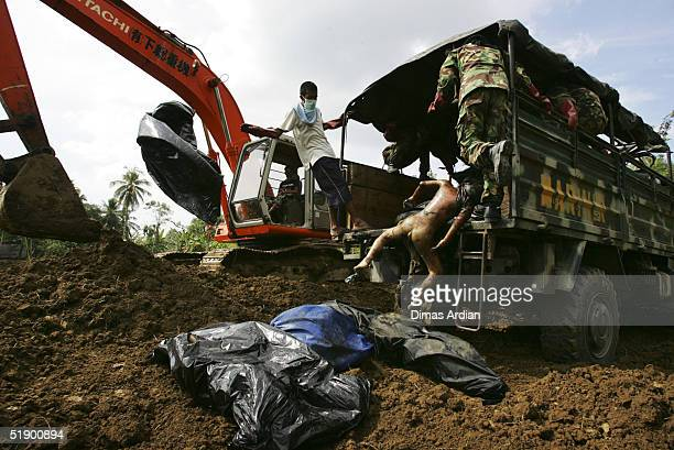 Indonesian soldiers dump unknown dead bodies from Sunday's earthquake and tsunamis into a common mass grave on December 29 in Banda Aceh Sumatra...