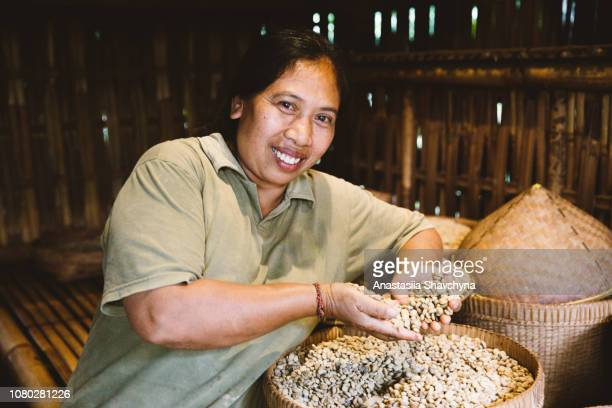 Indonesian woman roasting coffee beans traditional way on Bali