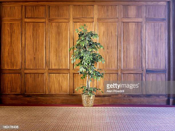 Wood Paneling Stock Photos and Pictures | Getty Images