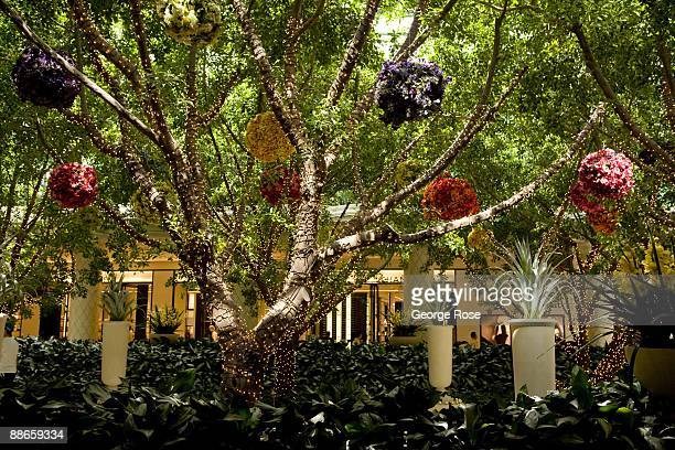 Indoor trees are decorated with thousands of lights in the atrium entrance of the Wynn Hotel and Casino as seen in this 2009 Las Vegas, Nevada,...