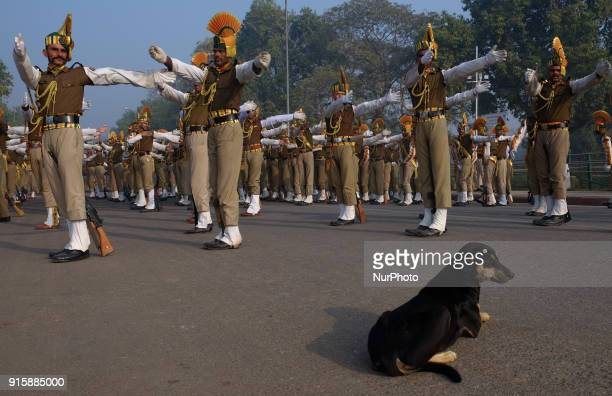 Indo-Tibetan Border Police guards practice stretching excerices along Delhi's Rajpath Road on January 13th, 2018.