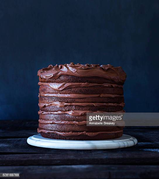 Indulgent Layered Chocolate Cake