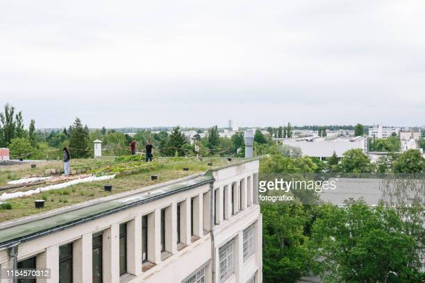 industrial building with an urban garden on the rooftop, people do gardening - urban garden stock pictures, royalty-free photos & images