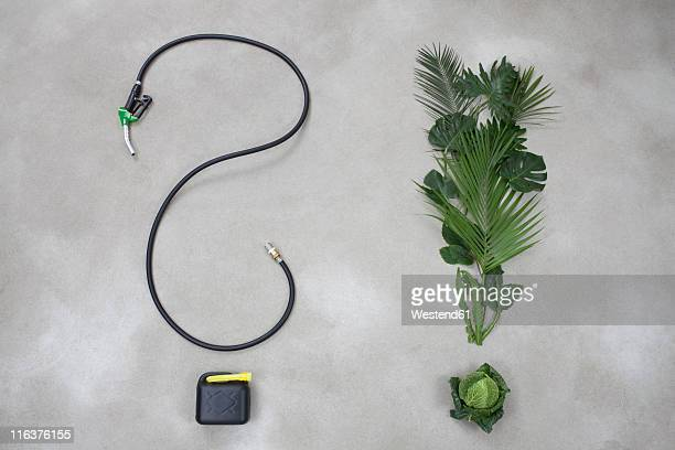 Industrial hose and plants making punctuation mark on gray background