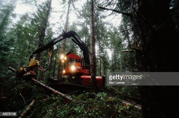 Industrial machine thinning forest