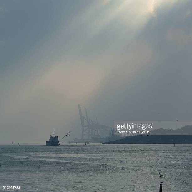 Industrial ship and cranes at harbor