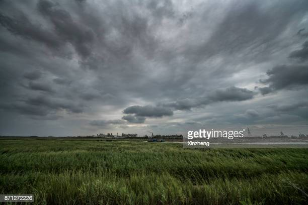 industry landscape - moody sky stock pictures, royalty-free photos & images