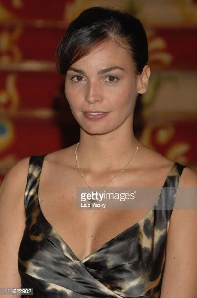 Ines Sastre during Ines Sastre and Andy Garcia Attend a Photocall for The Lost City October 17 2006 in Madrid Spain