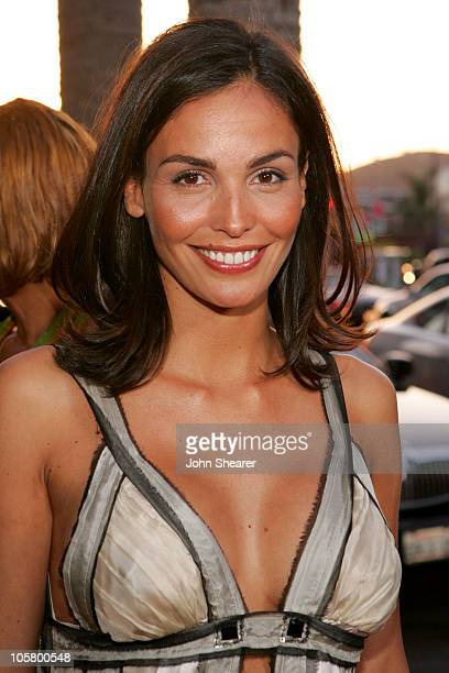 Ines Sastre during 'The Lost City' Los Angeles Premiere Red Carpet at Cinerama Dome in Los Angeles California United States