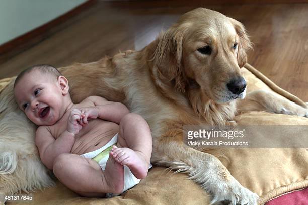 infant boy sitting with his dog on pillow. - vida de bebé fotografías e imágenes de stock