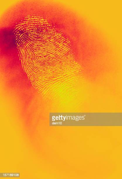 Infared Thermal Camera with Fingerprint