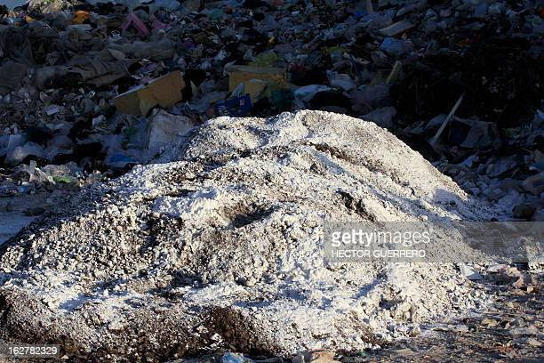 Infected chicken manure called gallinaza in a garbage dump at Dolores Hidalgo Guanajuato State Mexico on February 26 2013 The Mexican government...