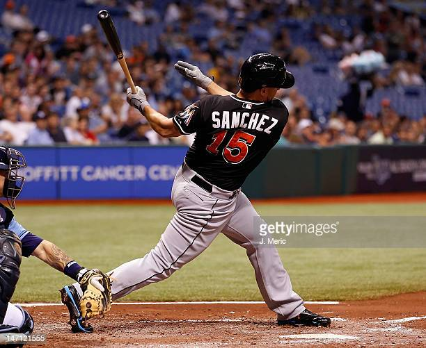 Infielder Gaby Sanchez of the Miami Marlins bats against the Tampa Bay Rays during the game at Tropicana Field on June 15 2012 in St Petersburg...
