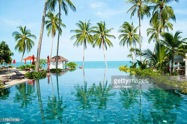 infinity pool, lamai beach, koh samui, thailand - ko samui bildbanksfoton och bilder