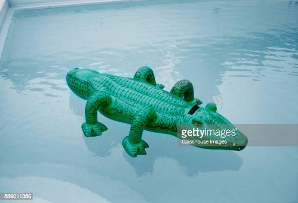 Inflatable Crocodile Floating in Pool
