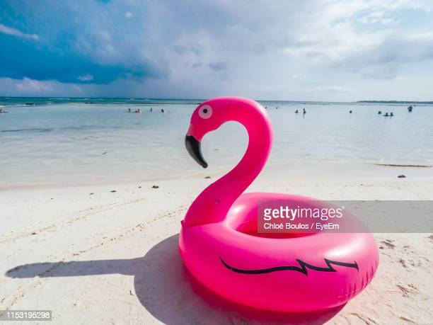 inflatable flamingo on beach against sky - inflatable stock pictures, royalty-free photos & images