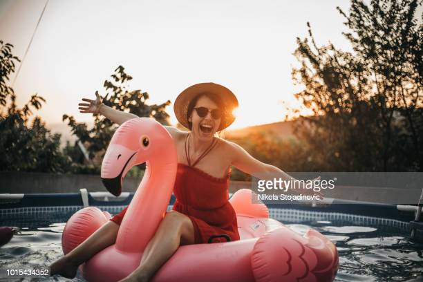 inflatable flamingo - standing water stock pictures, royalty-free photos & images