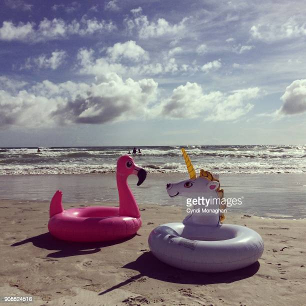 Inflatible Flamingo and Unicorn Swim Floats