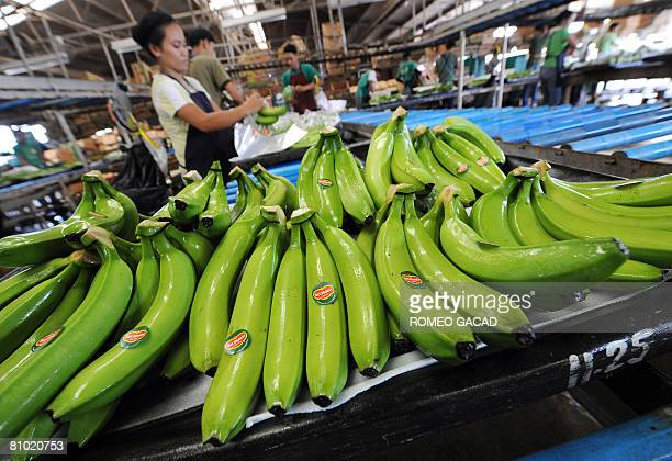InflationpovertyfoodPhilippinesagriculturereformFEATURE by Cecil Morella Workers pack freshly harvested bananas at the processing plant of the...