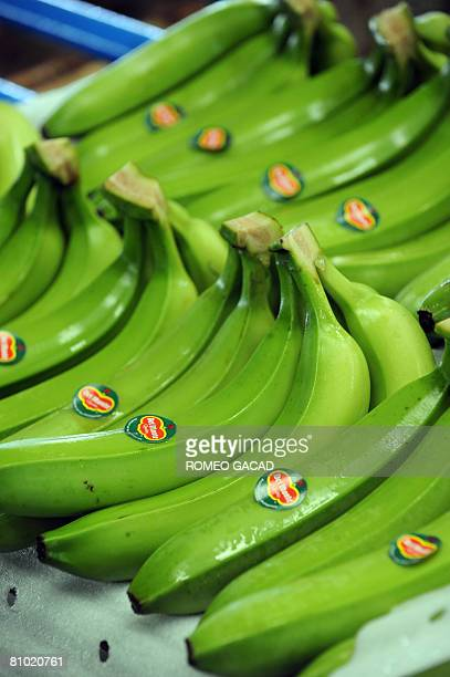 InflationpovertyfoodPhilippinesagriculturereformFEATURE by Cecil Morella Freshly harvested bananas from the Philippines biggest banana producer Tagum...