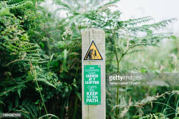 information sign against plants - western script stock pictures, royalty-free photos & images