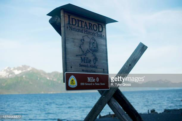 information sign on iditarod trail, seward,, alaska, usa - iditarod stock pictures, royalty-free photos & images