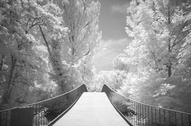 Infrared image, bridge over the river Rems, park landscape Talaue, Waiblingen, Baden-Wuerttemberg, Germany