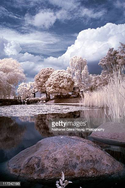 Infrared photo of lake in Singapore