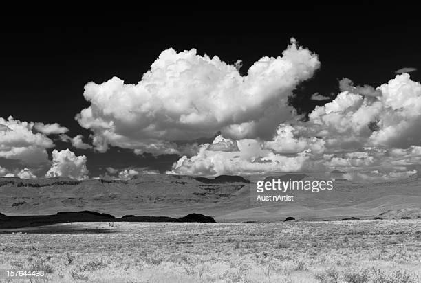 infrarossi deserto in texas - infrarosso foto e immagini stock