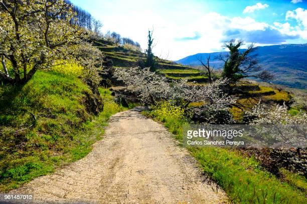infrastructure in rural areas in spain - estremadura stock-fotos und bilder