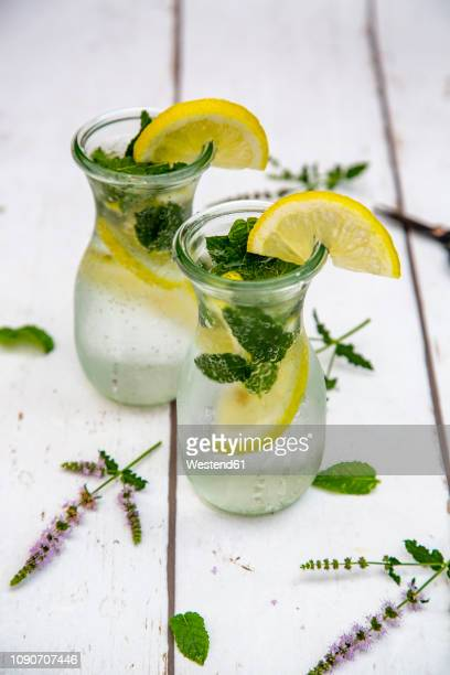 infused water with mint and lemon, detox - infused water stock pictures, royalty-free photos & images
