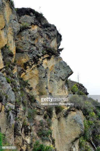 Ingapirca - Inca Ruins