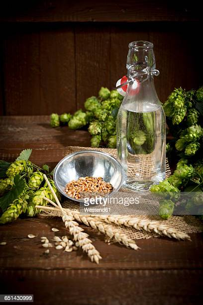 Ingedients for beer brewing, water, barley, hops and malt