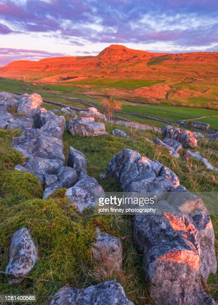 ingleborough moutain in red at sunset. yorkshire dales. uk. - limestone pavement stock pictures, royalty-free photos & images