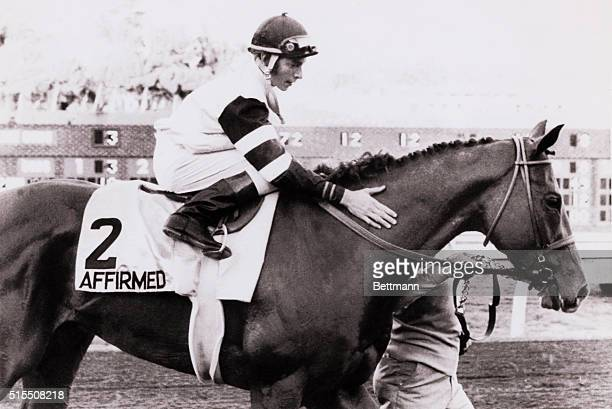 Jockey Steve Cauthen has pat on the neck for his mount Affirmed after winning the $284750 Hollywood Derby at Hollywood Park It was Affirmed's fourth...