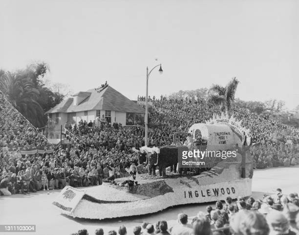 Inglewood's entry in the Tournament of Roses, the float depicts cattle pulling a covered wagon on which is written 'California, Here I Come', with...