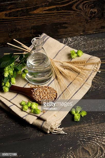 Ingredients for brewing beer, hops, water, barley
