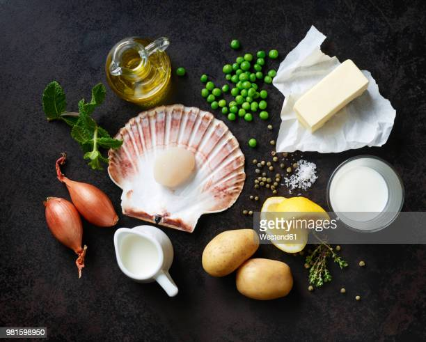 ingredients for scallops on nut butter with pea and mint puree - scallop stock photos and pictures