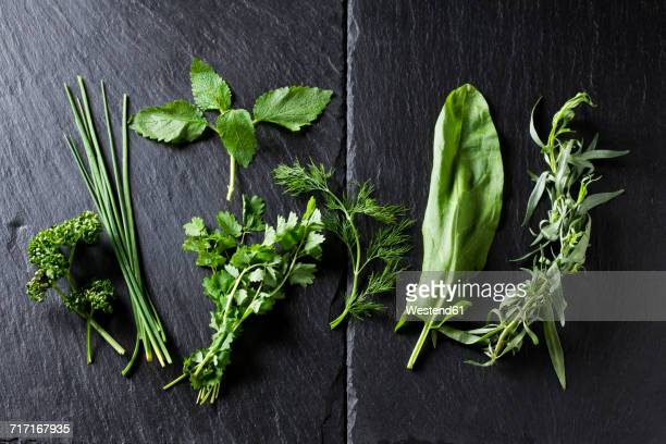 Ingredients of Frankfurt green sauce