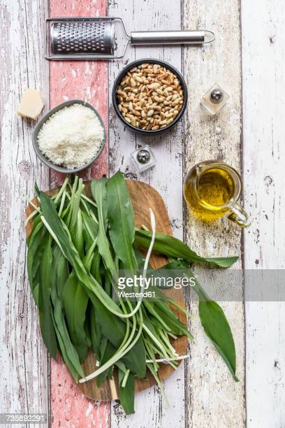 ingredients of ramson pesto - ail des ours photos et images de collection
