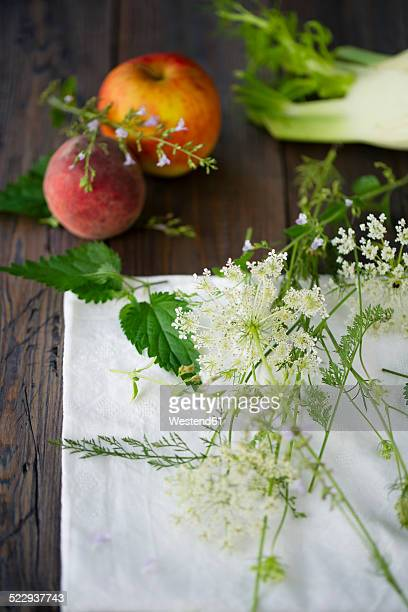 ingredients of wild herb smoothie on cloth and dark wood - catmint stock pictures, royalty-free photos & images